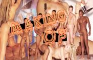 Um Manking Of exclusivo com todos os bastidores da putaria de Cris Bel!