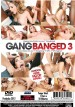 filme pornô Gang Banged 3 mini capa