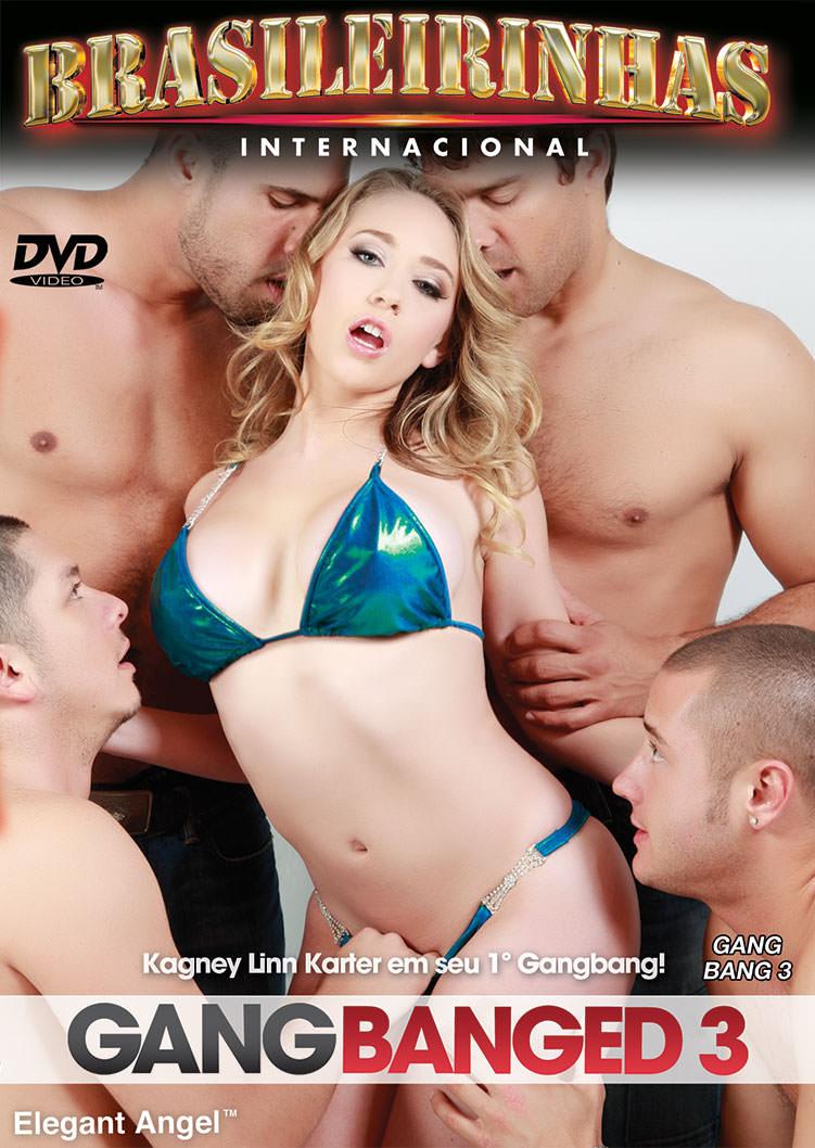 Capa frente do filme Gang Banged 3
