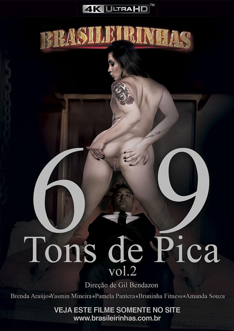 Capa frente do filme 69 Tons de Pica 2