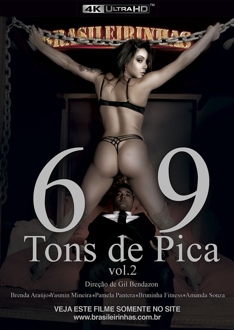 Capa Hard do filme 69 Tons de Pica 2