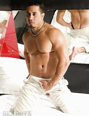 Mendes ator pornô gay