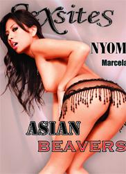 Asian Beavers